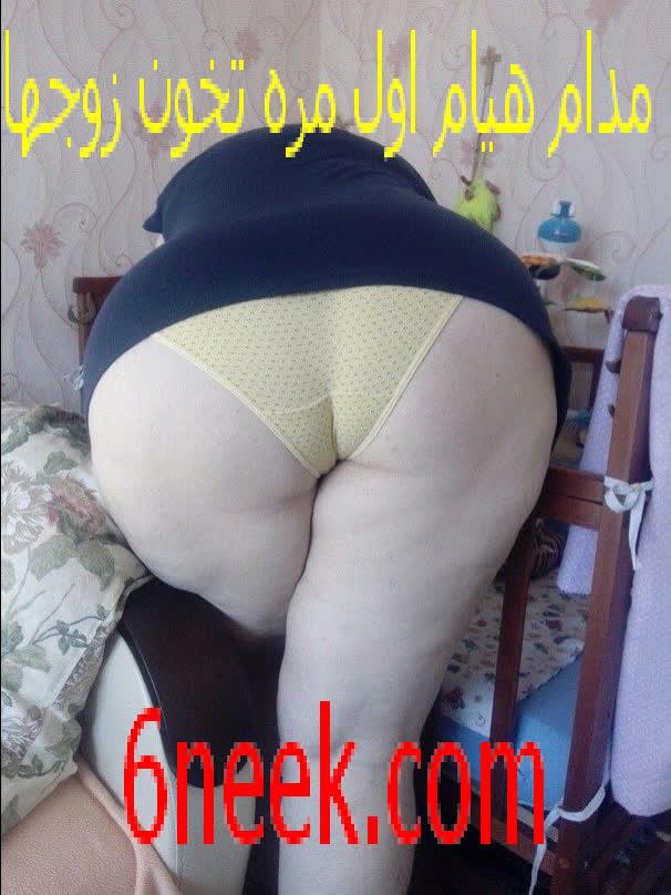قصص سكس عربى